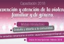 Capacitación sobre Prevención de la Violencia Familiar y de Género a cargo del PPEM
